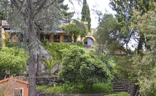 Mimosa Casa Villa Scozilia